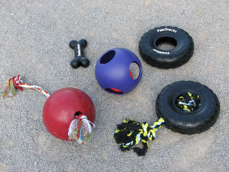 7 Toy Storage Baskets Around Dog Park