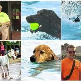 Photos from the 2014 Dog Swim