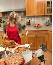 Thanksgiving  Pet Safety from the American Veterinarian Medical Association