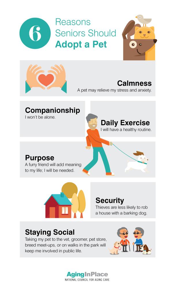 Benefits of pets essay