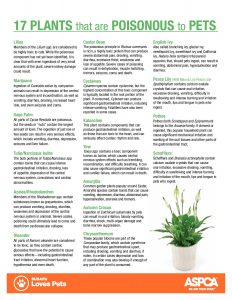 handout_poisonous-plants-page-001