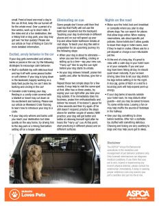 handout_roadtrips-dog-page-002 (1)