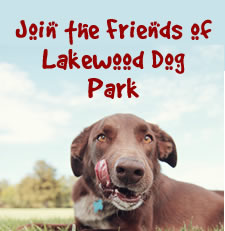 Join Lakewood Dog Park