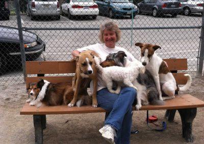 Walter Haverfield LLP Doggie Meetup